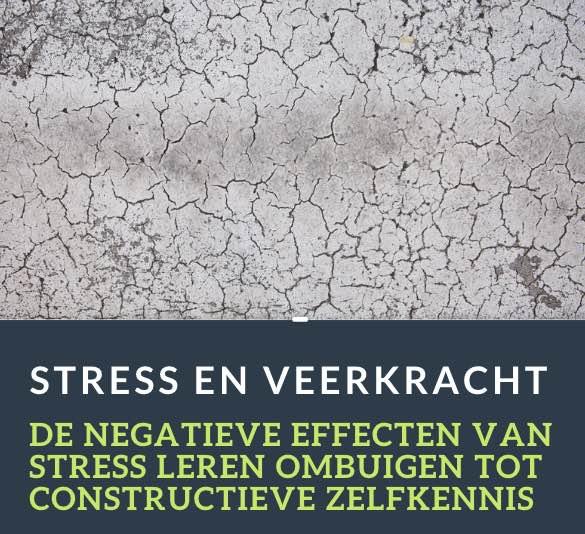 stress-nl
